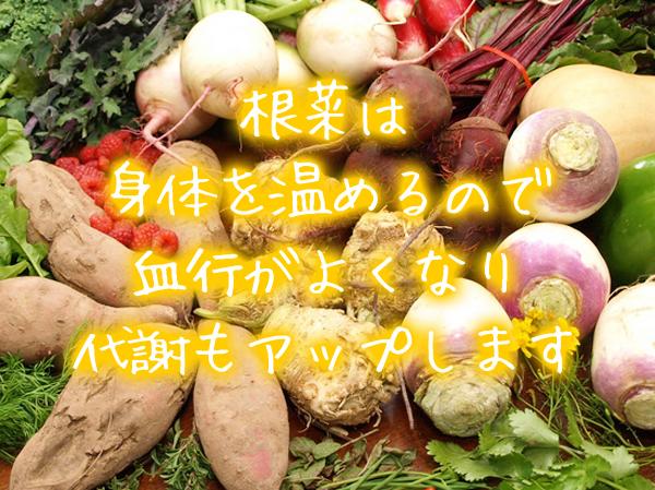 頭皮湿疹の食べ物:根菜:身体を温め代謝をアップ.jpg