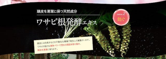 ワサビ根発酵エキス.jpg
