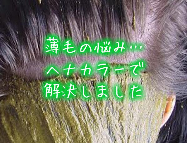 薄毛の悩み…ヘナカラーで解決しました。.jpg