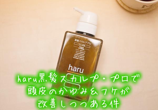haru黒髪スカルプ・プロで頭皮のかゆみ&フケが改善しつつある件.jpg