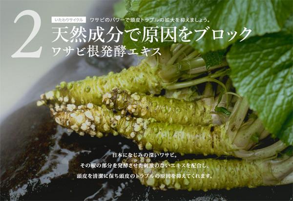すこやか地肌の成分・ワサビ根発酵エキス.jpg