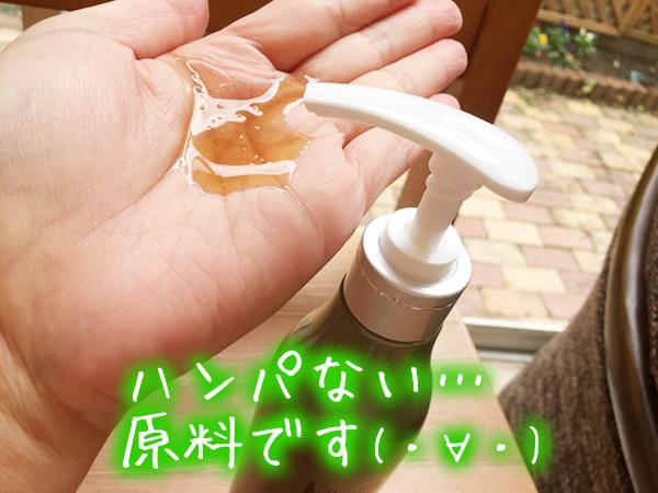 ハーブガーデンシャンプーの原料・成分・効果.jpg